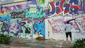 Arte en el wynwood Miami FL almacen de video