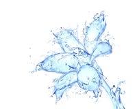 Arte -final do líquido da flor da flor Imagem de Stock Royalty Free