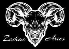 Arte finala bonita desenhado à mão de uma ram arte linear Alto-detalhada do estilo Áries, sinal do zodíaco Ilustração na moda do  ilustração stock