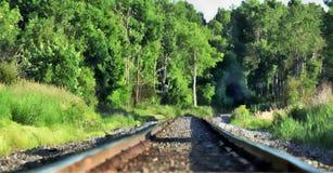 Arte finala de trilhas e de floresta do trem fotografia de stock royalty free