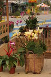 Arte floral Imagens de Stock Royalty Free