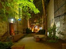 Arte forte das luzes e dos grafittis de rua, Knoxville, Tennessee, Estados Unidos da América: [Vida noturna no centro de K fotografia de stock royalty free