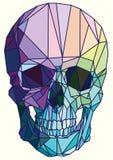 arte geométrico colorido Bajo-polivinílico del cráneo Foto de archivo
