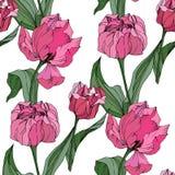 Arte grabado tulipán de la tinta del vector Flor botánica floral Modelo inconsútil del fondo Textura de la impresión del papel pi stock de ilustración
