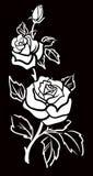 Arte grafica del fiore della Rosa con i fogli Immagine Stock