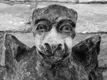 Arte grottesca medievale del doccione Immagine Stock Libera da Diritti
