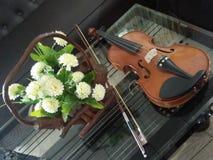 Arte hermoso de los mucis de la foto artística del violín imagenes de archivo