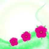 Arte hermoso del fondo de la flor del vector Fotos de archivo libres de regalías