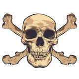 Arte humana do vetor do crânio Ilustração desenhada mão Imagens de Stock Royalty Free
