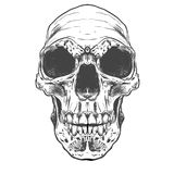 Arte humana do vetor do crânio Ilustração desenhada mão Fotos de Stock