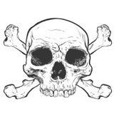 Arte humano del vector del cráneo Ilustración drenada mano Foto de archivo