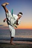 Arte marcial imagens de stock royalty free