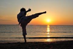 Arte marcial Foto de archivo libre de regalías