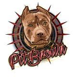 Arte marrón del perro del hoyo Fotografía de archivo
