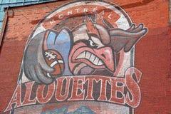 Arte Montreal Alouettes de la calle foto de archivo libre de regalías