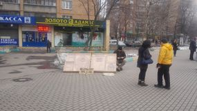 Arte a Mosca Fotografia Stock Libera da Diritti