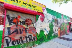 Arte mural en Bushwick, Brooklyn, NYC Imagen de archivo libre de regalías