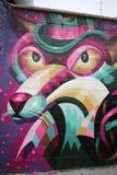 Arte mural en Williamsburg del este en Brooklyn Imagenes de archivo