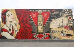 Arte mural na pele de coelho nova Art Walls da atração da arte da rua na seção de Coney Island em Brooklyn Imagens de Stock Royalty Free