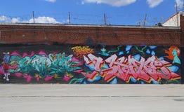 Arte murala di tema del Porto Rico a Williamsburg orientale fotografia stock libera da diritti