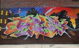 Arte murala di tema del Porto Rico a Williamsburg orientale fotografie stock
