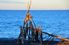 Arte Nuova Zelanda della spiaggia del legname galleggiante fotografie stock