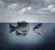 Arte surreal dos peixes ilustração do vetor
