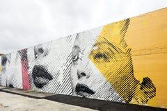 Arte y murales de la calle en el Midtown Miami Fotos de archivo libres de regalías