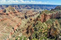 A artemísia verde pontilha o arenito íngreme Cliff Side em Grand Canyon do Arizona foto de stock royalty free