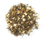 Artemisia annua Qing Hao Στοκ εικόνες με δικαίωμα ελεύθερης χρήσης