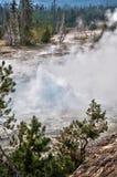 Artemisia geyser, Yellowstone National Park Royalty Free Stock Photos