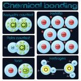 Arten des chemischen Abbindens Stockfotos