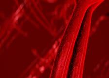 Arterias de la sangre venas Imágenes de archivo libres de regalías