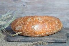 Artesão feito a mão, nacos lareira-cozidos do pão branco no fermento, Foto de Stock Royalty Free
