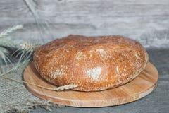 Artesão feito a mão, nacos lareira-cozidos do pão branco no fermento, Imagens de Stock