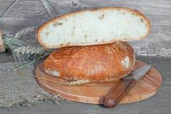 Artesão feito a mão, nacos lareira-cozidos do pão branco no fermento, Imagens de Stock Royalty Free
