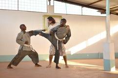 Artes marciais Fotos de Stock