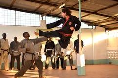 Artes marciais Imagem de Stock