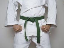 Artes marciais centradas do lutador cinto verde ereto Fotos de Stock Royalty Free