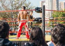 Artes marciais de observa??o da multid?o exterior imagem de stock royalty free