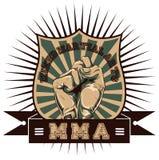 Artes marciais misturadas Fotografia de Stock Royalty Free
