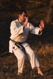 Artes marciales fotografía de archivo