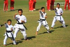 Artes marciales de la maestría foto de archivo