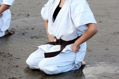 Artes marciales del karate japonés Fotografía de archivo libre de regalías