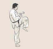 Artes marciales - retroceso Foto de archivo