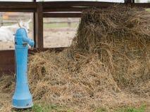Artesian water pump Stock Images