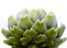 Artful Artichoke Royalty Free Stock Images