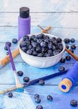 The artfully delicious blueberry. A bowl of fresh, juicy blueberries  is posed with paint and brushes to illustrate the art of the amazing blueberry Royalty Free Stock Images