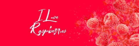 Artfully and lovingly designed photo montage with raspberries and watercolor spraying in the background Banner royalty free stock photography