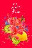 Artfully och planlade lovingly fruktexplosion med hallon, björnbär, jordgubbar, kiwier, citronen och vatten vektor illustrationer